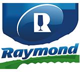logo raymond boisson