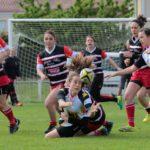 Match séniors Albi - Alban/Lacaune